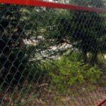 забор из сетки рабицы для дома